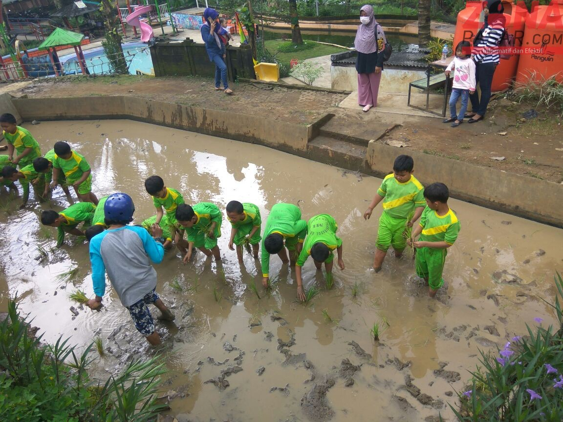 Taman Kelinci Tuntang, Tempat Rekreasi dan Outbond yang Memuaskan